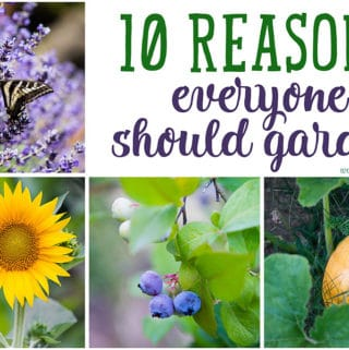10 Reasons Everyone Should Garden