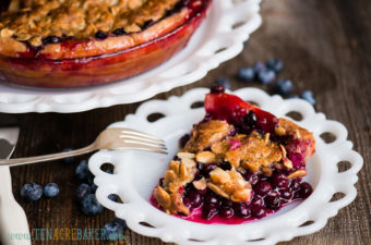 slice of blueberry crumb pie
