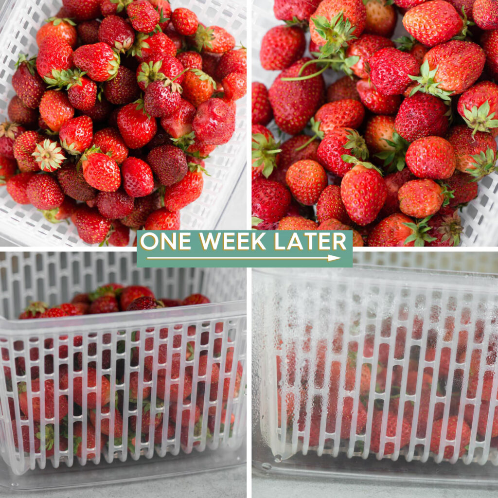 side by side comparison showing how to keep strawberries fresh