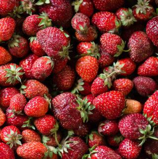 Hood strawberries from Oregon