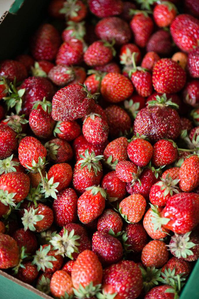 dark red strawberries